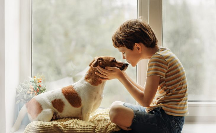 Young boy kissing Jack Russel on nose