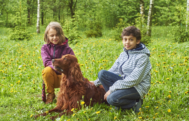 Sister and brother sit with Irish Setter dog in green field