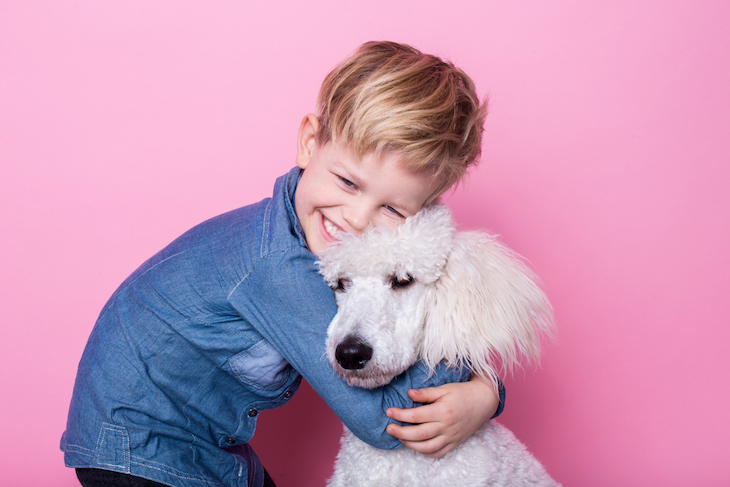 Young boy cuddling white poodle on pink background