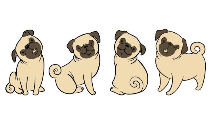 how-to-draw-a-pug