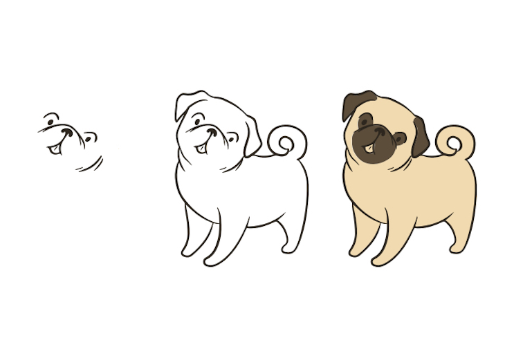 Step-by-step drawing process of standing Pug